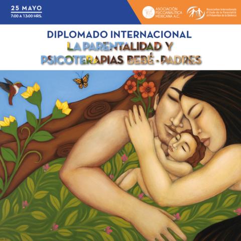 Diplomado Internacional de la Parentalidad y Psicoterapias Bebe-Padres