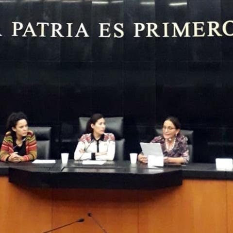 ADRIANA VILLARREAL EXPUSO ANTE EL SENADO DE LA REPÚBLICA SU TRABAJO