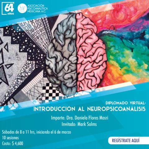 """Diplomado Virtual: """"Introducción al Neuropsicoanálisis"""""""