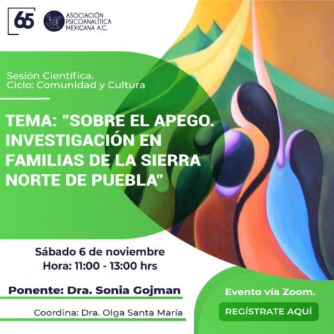 Sobre el apego. Investigación en familias de la Sierra Norte de Puebla